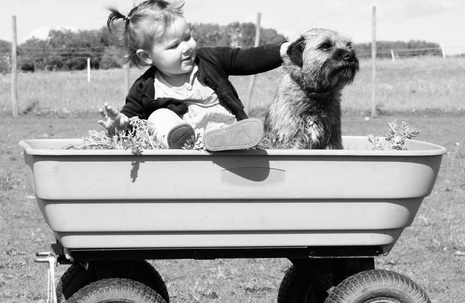 Cani, gatti & bambini