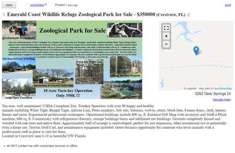 Vendesi Zoo online: solo per amanti degli animali!