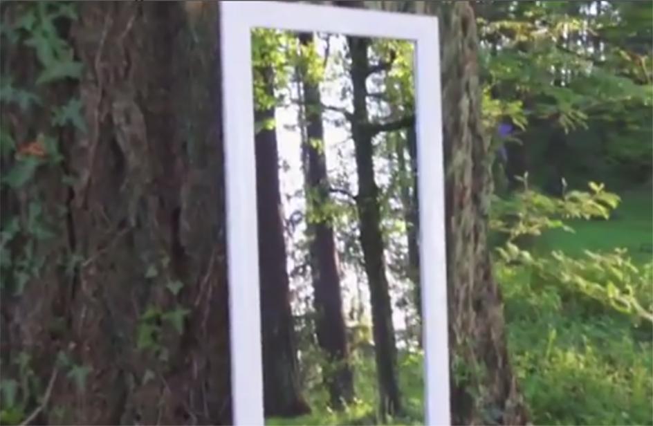 Attraversa lo specchio nel bosco, l'illusione ha una spiegazione