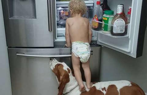 Un'alleanza perfetta per saccheggiare il frigo!